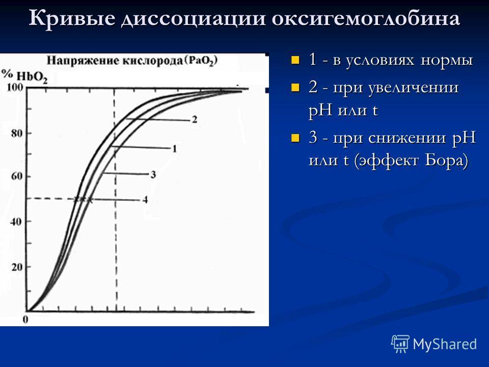 Кривые диссоциации оксигемоглобина 1 - в условиях нормы 2 - при увеличении рН или t 3 - при снижении рН или t (эффект Бора)