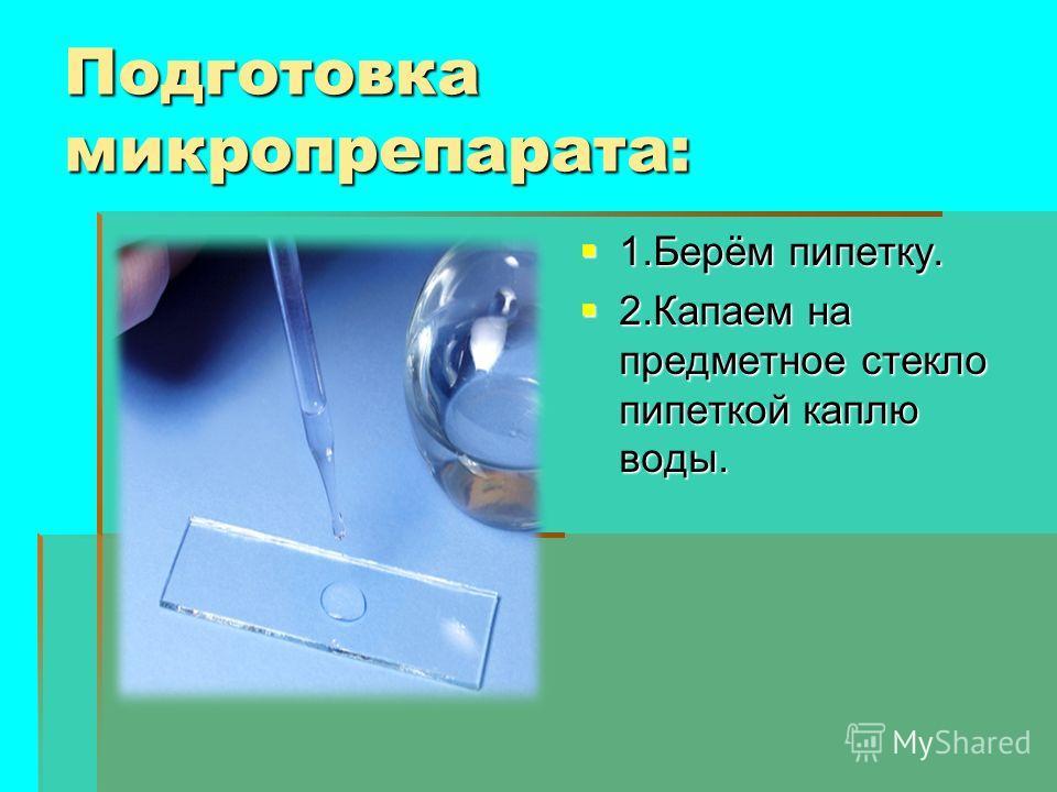 Подготовка микропрепарата: 1.Берём пипетку. 1.Берём пипетку. 2. Капаем на предметное стекло пипеткой каплю воды. 2. Капаем на предметное стекло пипеткой каплю воды.