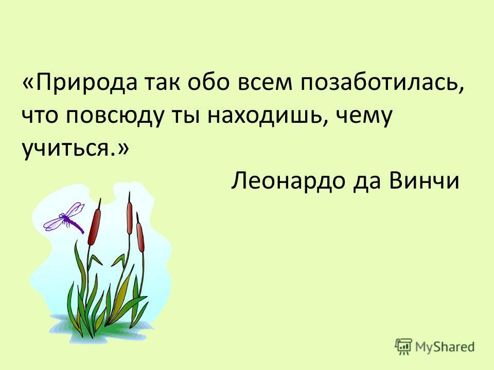 «Природа так обо всем позаботилась, что повсюду ты находишь, чему учиться.» Леонардо да Винчи