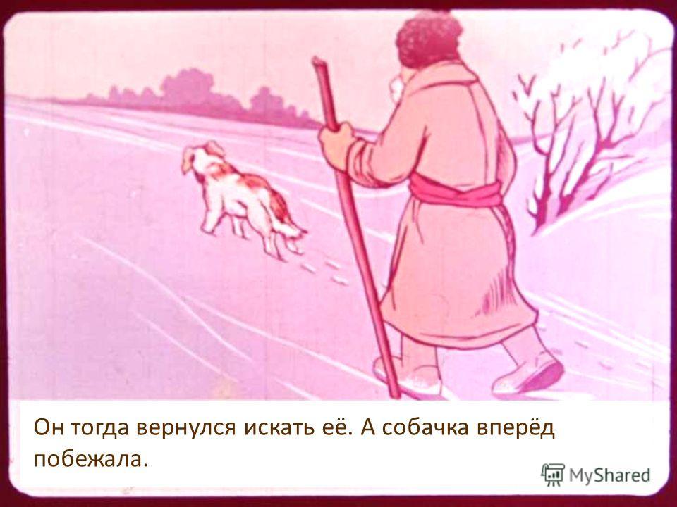 Бежит лисичка: Он тогда вернулся искать её. А собачка вперёд побежала.