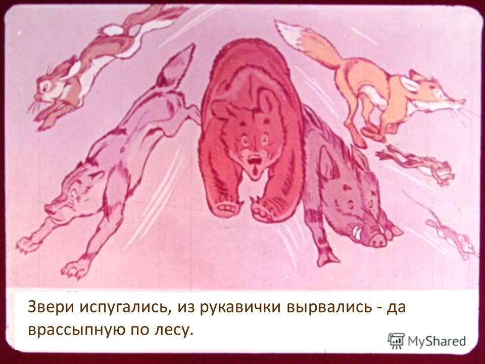 Бежит лисичка: Звери испугались, из рукавички вырвались - да врассыпную по лесу.