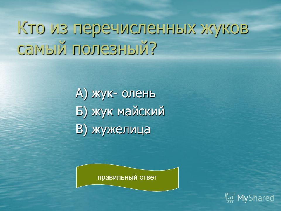 Кто из перечисленных жуков самый полезный? А) жук- олень А) жук- олень Б) жук майский Б) жук майский В) жужелица В) жужелица правильный ответ