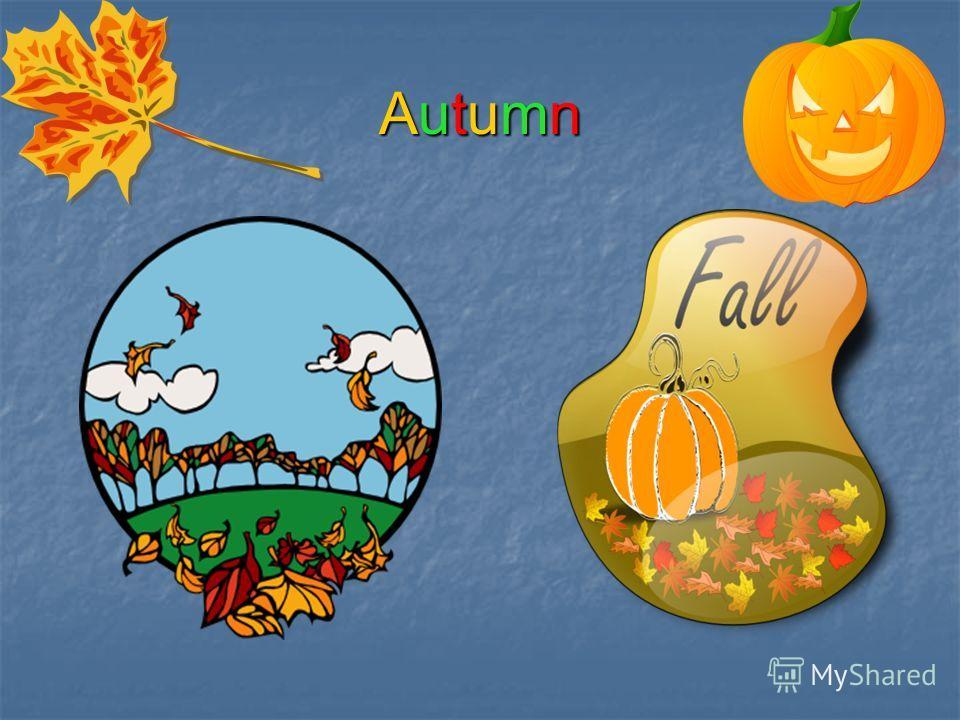 AutumnAutumnAutumnAutumn