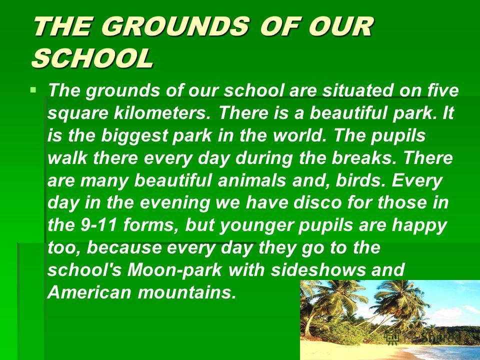 THE GROUNDS OF OUR SCHOOL The grounds of our school are situated on five square kilometers. There is a beautiful park. It is the biggest park in the world. The pupils walk there every day during the breaks. There are many beautiful animals and, birds