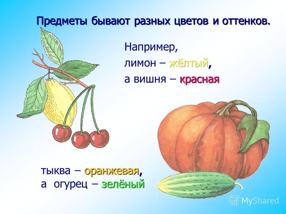 оранжевая, зелёный тыква – оранжевая, а огурец – зелёный Предметы бывают разных цветов и оттенков. Например, жёлтый, лимон – жёлтый, красная а вишня – красная