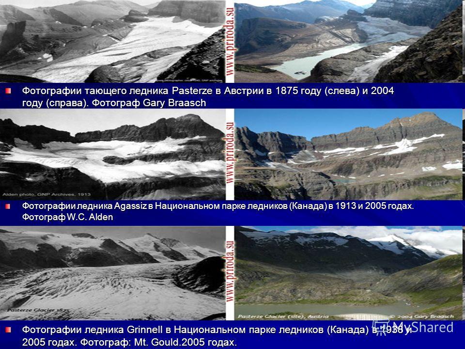 Фотографии тающего ледника Pasterze в Австрии в 1875 году (слева) и 2004 году (справа). Фотограф Gary Braasch Фотографии ледника Agassiz в Национальном парке ледников (Канада) в 1913 и 2005 годах. Фотограф W.C. Alden Фотографии ледника Grinnell в Нац