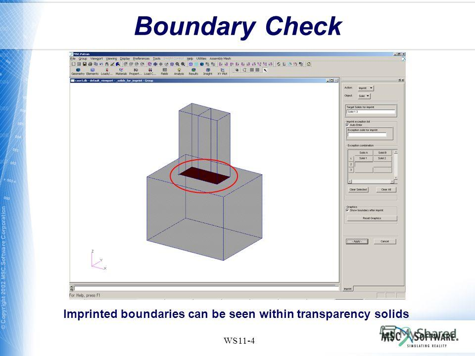 WS11-4 Boundary Check Imprinted boundaries can be seen within transparency solids
