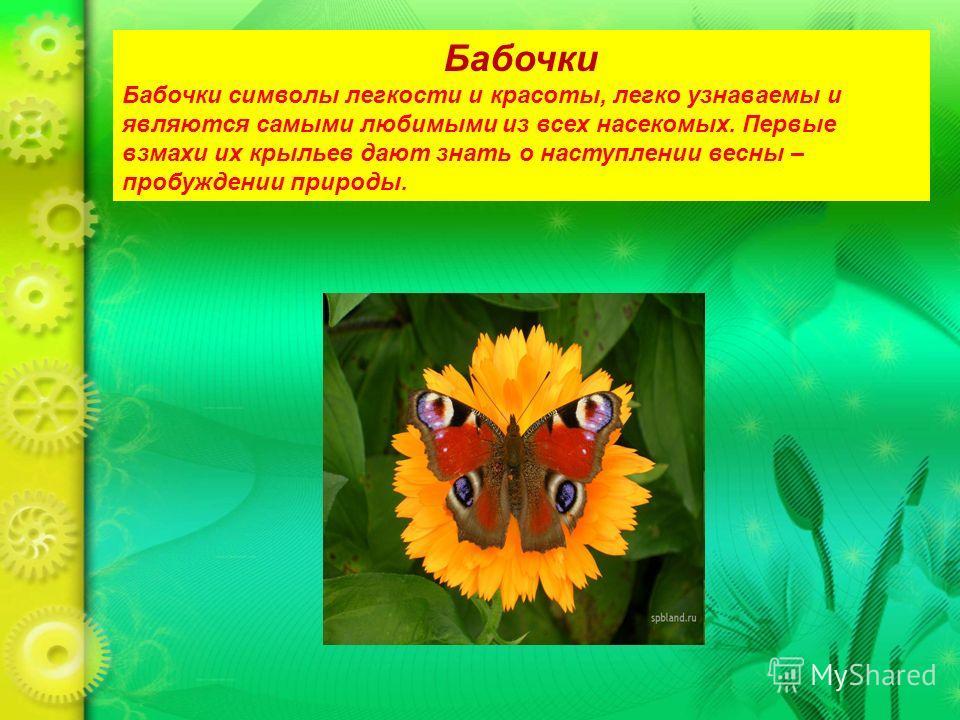 Бабочки Бабочки символы легкости и красоты, легко узнаваемы и являются самыми любимыми из всех насекомых. Первые взмахи их крыльев дают знать о наступлении весны – пробуждении природы.