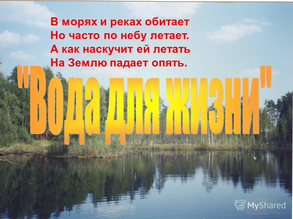 В морях и реках обитает Но часто по небу летает. А как наскучит ей летать На Землю падает опять.