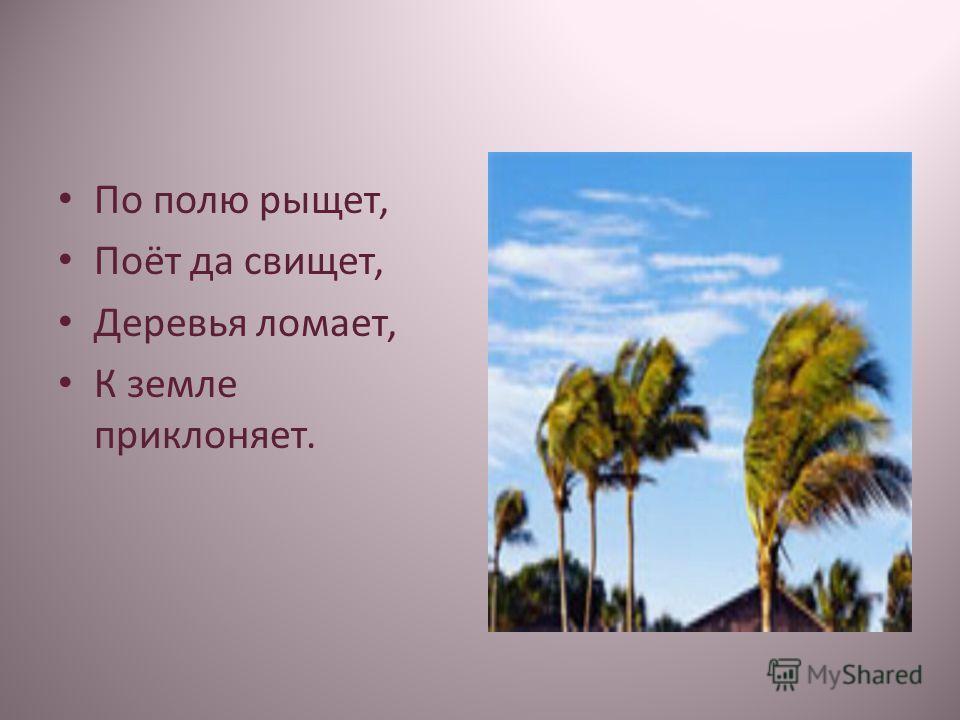 По полю рыщет, Поёт да свищет, Деревья ломает, К земле приклоняет.
