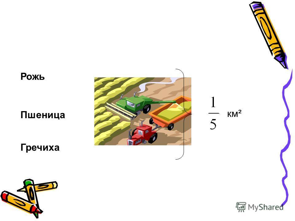 Рожь Пшеница Гречиха км²