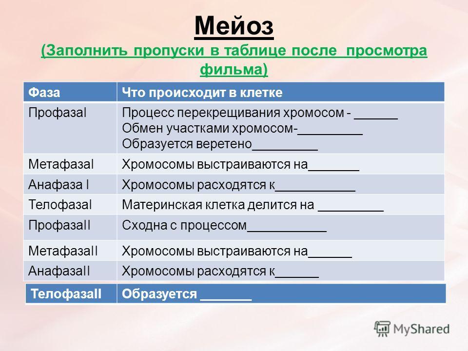 Мейоз (Заполнить пропуски в таблице после просмотра фильма) Фаза Что происходит в клетке ПрофазаIПроцесс перекрещивания хромосом - ______ Обмен участками хромосом-_________ Образуется веретено_________ МетафазаIХромосомы выстраиваются на_______ Анафа