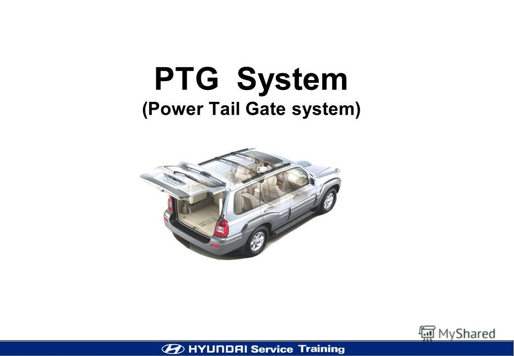 PTG System (Power Tail Gate system)