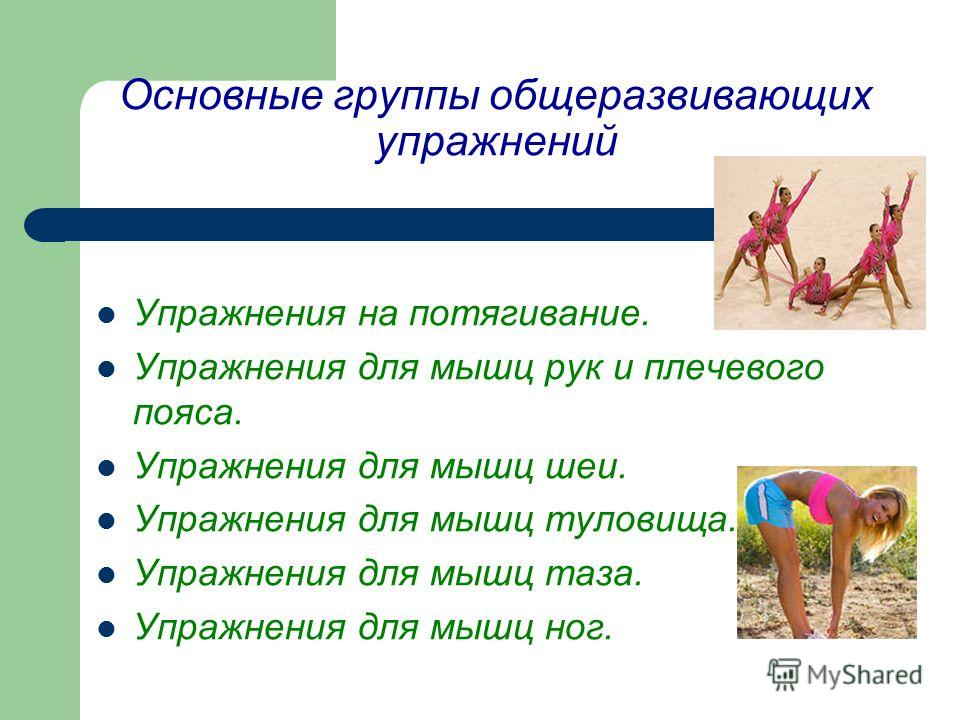Основные группы общеразвивающих упражнений Упражнения на потягивание. Упражнения для мышц рук и плечевого пояса. Упражнения для мышц шеи. Упражнения для мышц туловища. Упражнения для мышц таза. Упражнения для мышц ног.