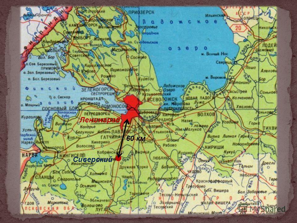 Ленинград Сиверский 60 км