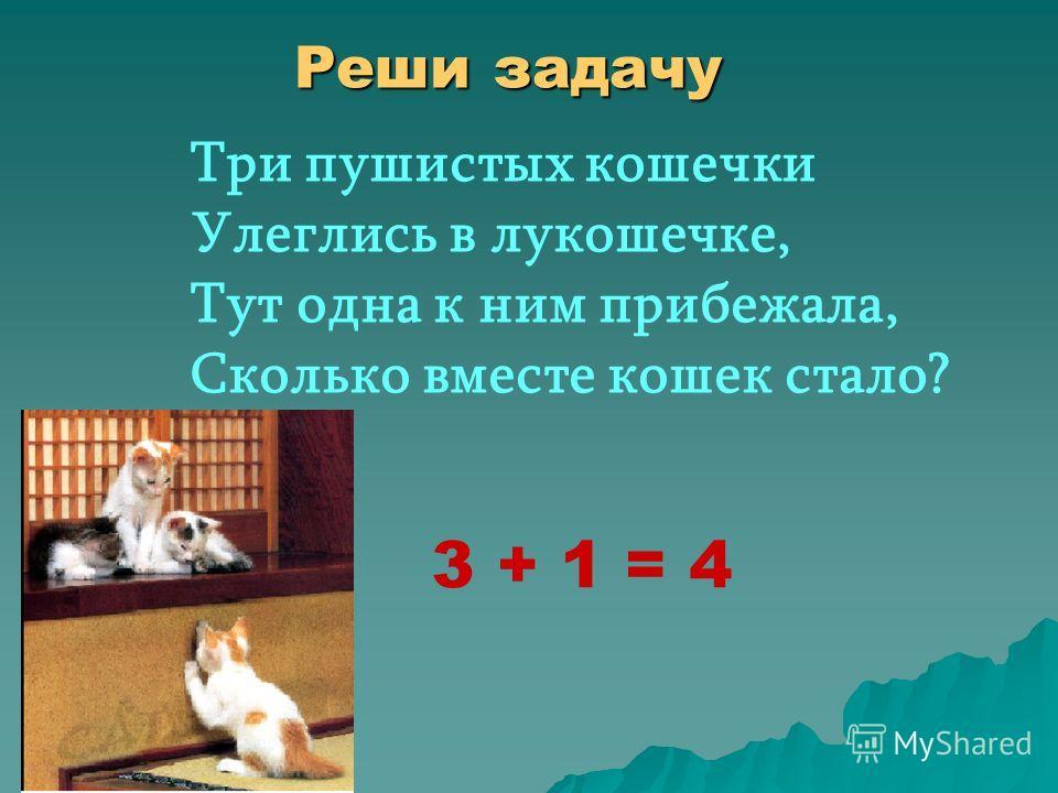 Расставьте выражения в порядке возрастания 4+43+31+12+35+5
