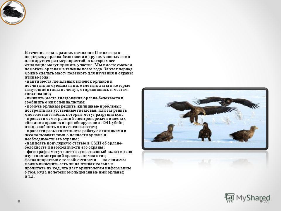 26 В течение года в рамках кампании Птица года в поддержку орлана-белохвоста и других хищных птиц планируется ряд мероприятий, в которых все желающие могут принять участие. Мы вместе сможем помогать орланам в течение всего года. За этот период можно