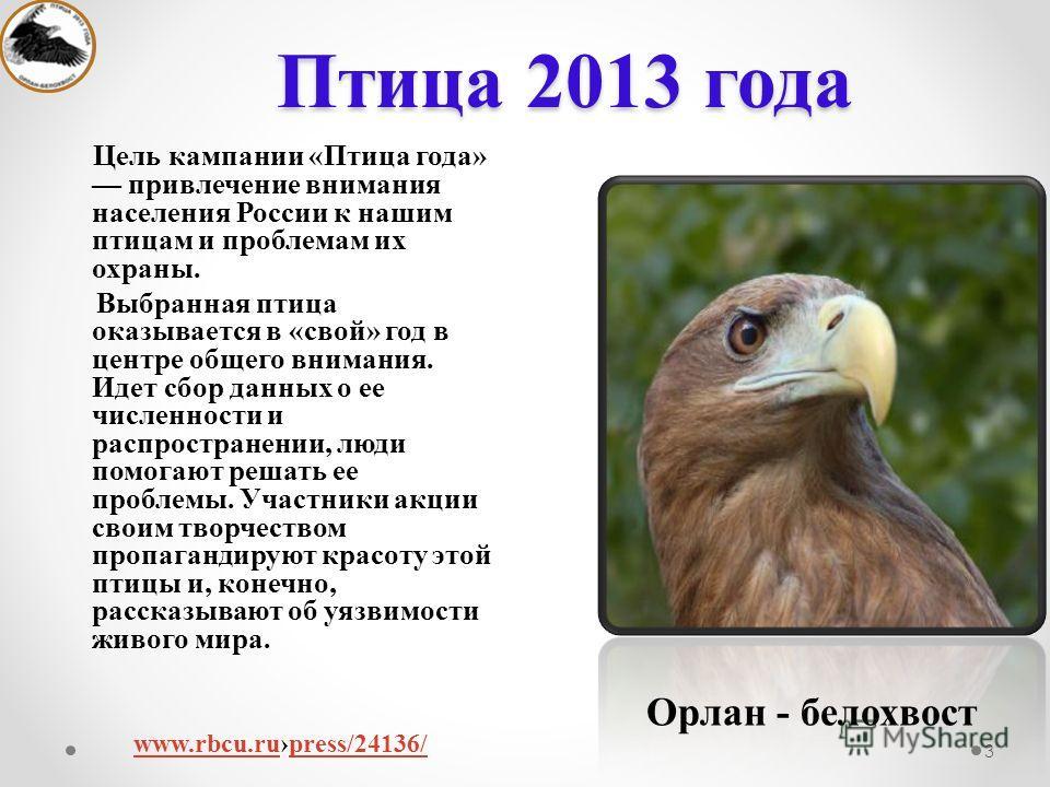 Птица 2013 года 3 Цель кампании «Птица года» привлечение внимания населения России к нашим птицам и проблемам их охраны. Выбранная птица оказывается в «свой» год в центре общего внимания. Идет сбор данных о ее численности и распространении, люди помо