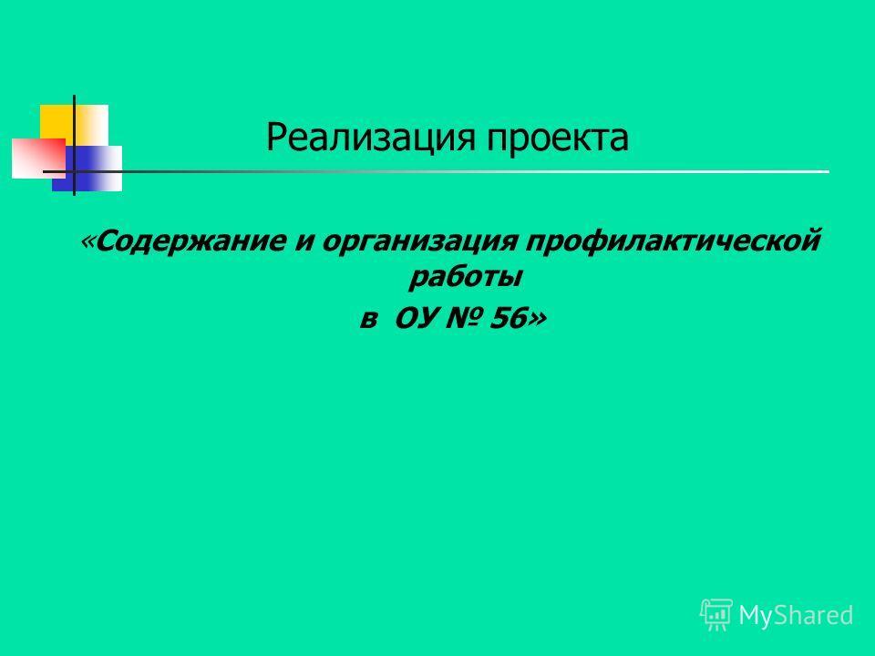 Реализация проекта «Содержание и организация профилактической работы в ОУ 56»