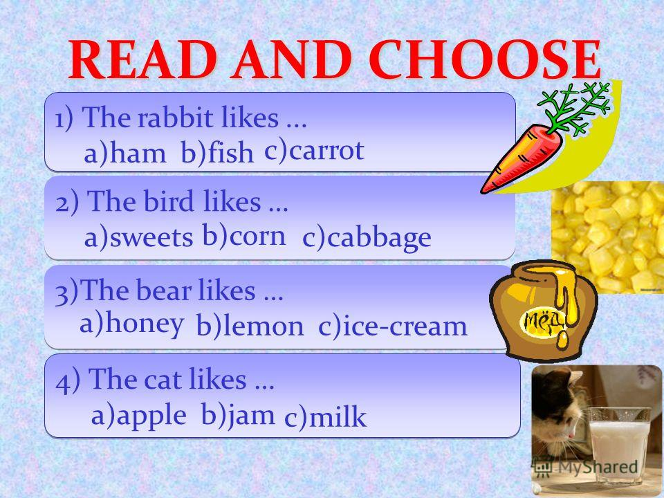 READ AND CHOOSE 1) The rabbit likes... a)ham b)fish 1) The rabbit likes... a)ham b)fish 2) The bird likes … a)sweets c)cabbage 2) The bird likes … a)sweets c)cabbage 3)The bear likes … b)lemon c)ice-cream 3)The bear likes … b)lemon c)ice-cream 4) The