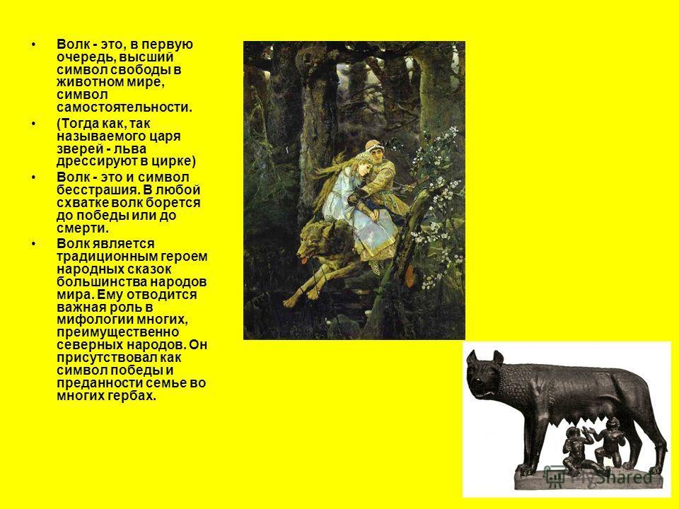 Волк - это, в первую очередь, высший символ свободы в животном мире, символ самостоятельности. (Тогда как, так называемого царя зверей - льва дрессируют в цирке) Волк - это и символ бесстрашия. В любой схватке волк борется до победы или до смерти. Во