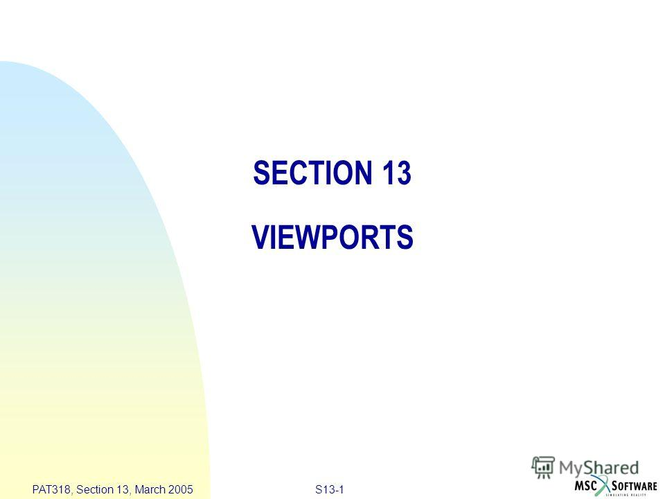 S13-1 PAT318, Section 13, March 2005 SECTION 13 VIEWPORTS