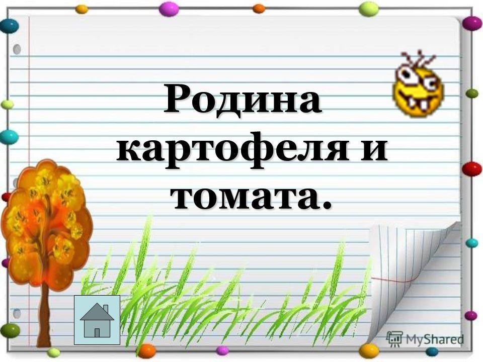 Родина картофеля и томата.