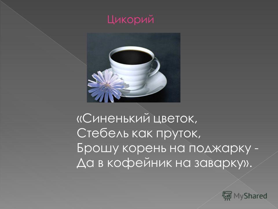 «Синенький цветок, Стебель как пруток, Брошу корень на поджарку - Да в кофейник на заварку». Цикорий