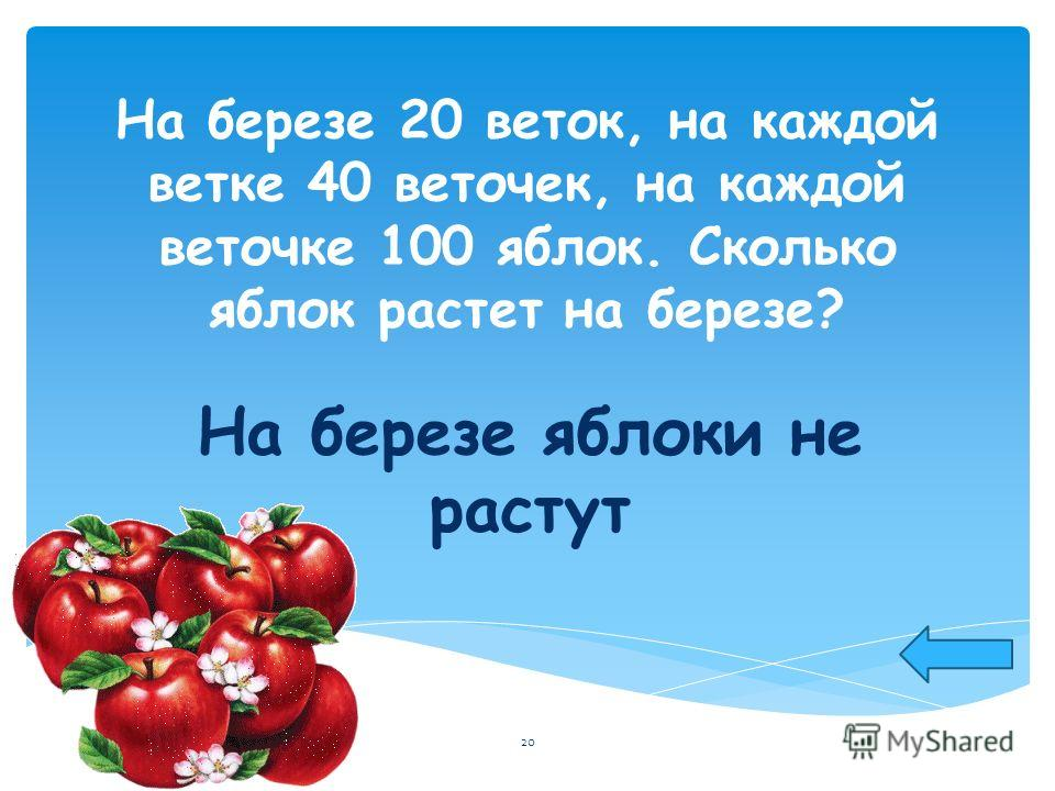 На березе 20 веток, на каждой ветке 40 веточек, на каждой веточке 100 яблок. Сколько яблок растет на березе? На березе яблоки не растут 20