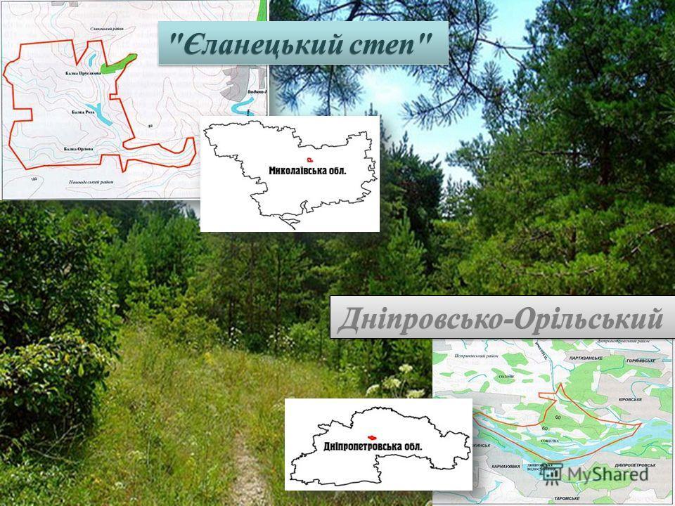 Єланецький степ Дніпровсько-Орільський Дніпровсько-Орільський