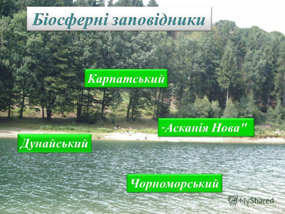 Дунайський Карпатський Чорноморський  Асканія Нова