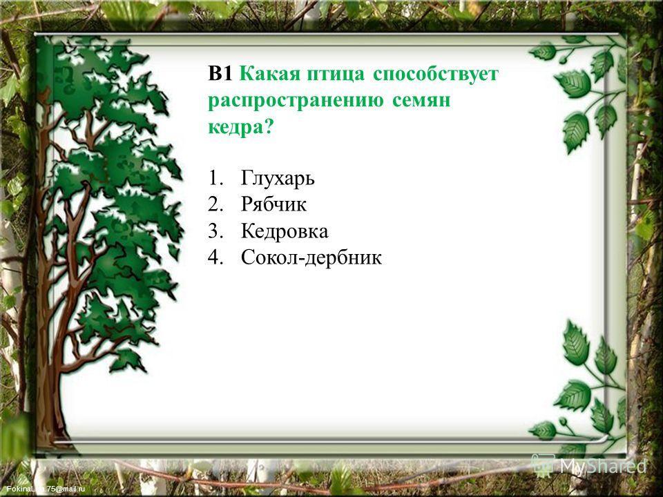 FokinaLida.75@mail.ru В1 Какая птица способствует распространению семян кедра? 1. Глухарь 2. Рябчик 3. Кедровка 4.Сокол-дербник