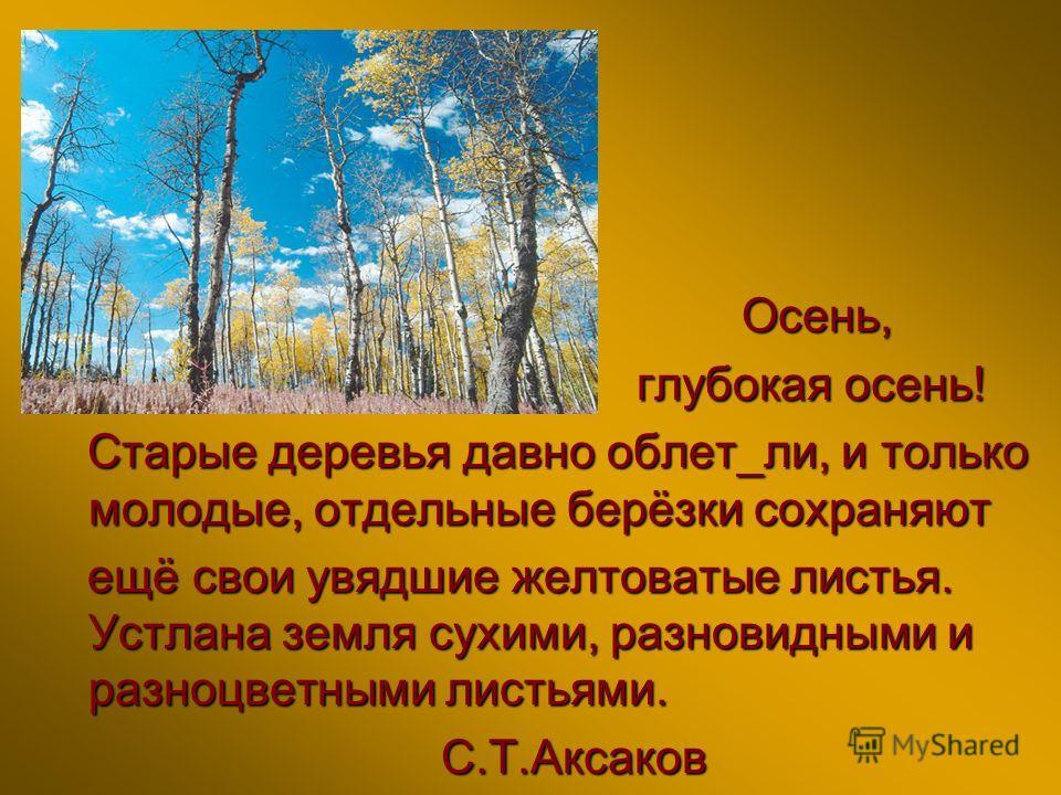 Красиво - реченск