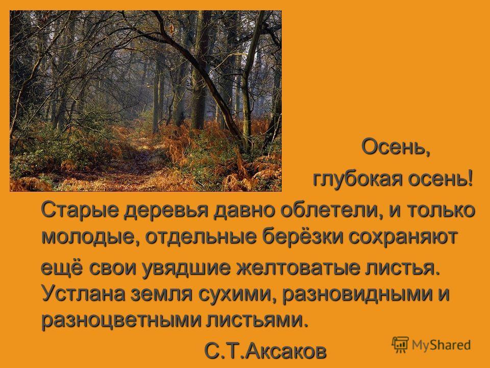 Осень, Осень, глубокая осень! глубокая осень! Старые деревья давно облет_ли, и только молодые, отдельные берёзки сохраняют Старые деревья давно облет_ли, и только молодые, отдельные берёзки сохраняют ещё свои увядшие желтоватые листья. Устлана земля