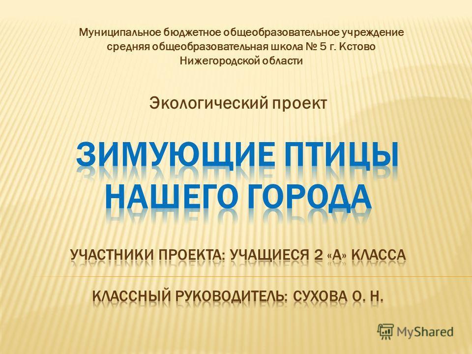 Экологический проект Муниципальное бюджетное общеобразовательное учреждение средняя общеобразовательная школа 5 г. Кстово Нижегородской области