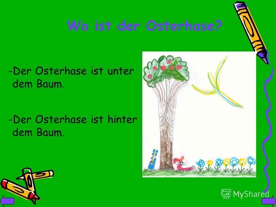 -Der Osterhase ist unter dem Baum. Wo ist der Osterhase? -Der Osterhase ist hinter dem Baum.
