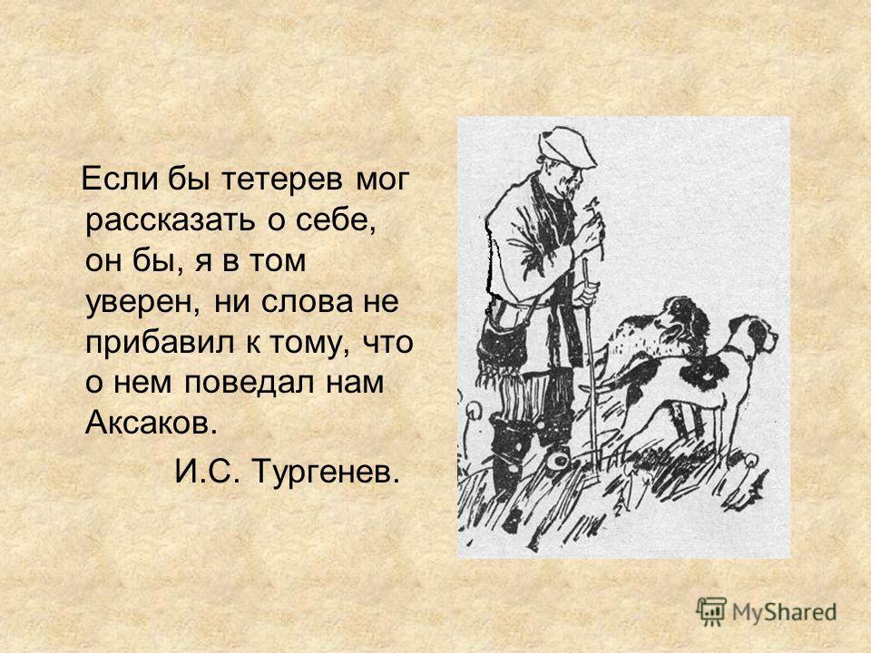 Если бы тетерев мог рассказать о себе, он бы, я в том уверен, ни слова не прибавил к тому, что о нем поведал нам Аксаков. И.С. Тургенев.