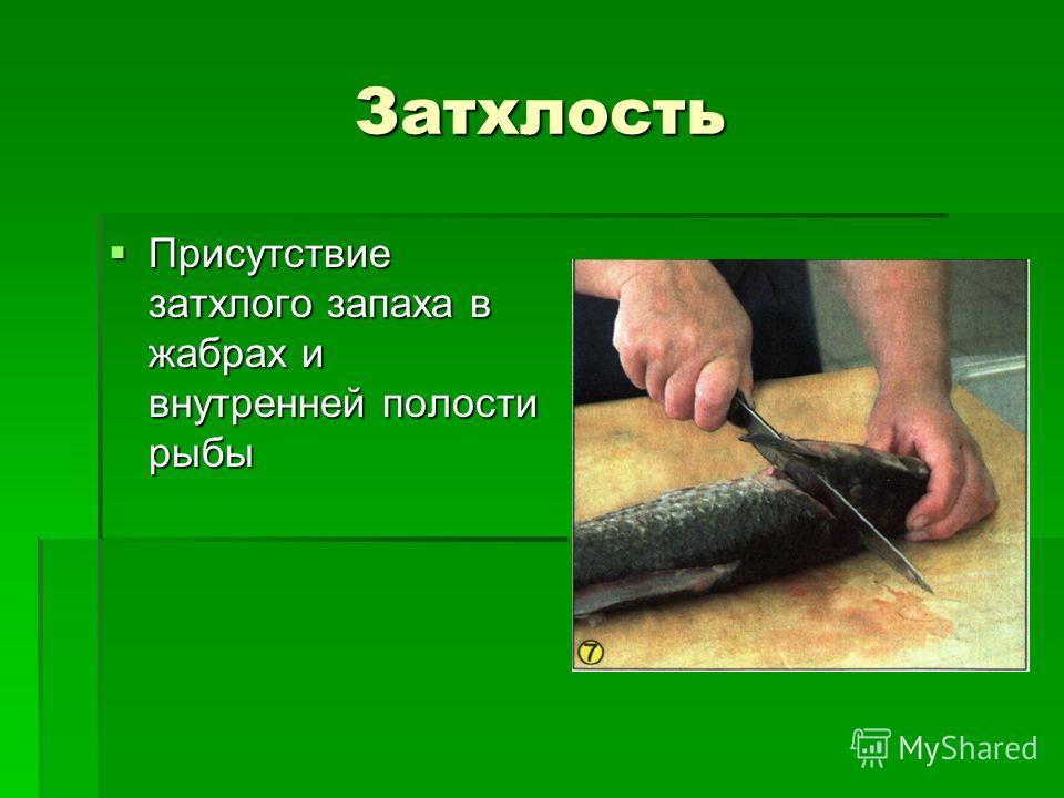 Затхлость Присутствие затхлого запаха в жабрах и внутренней полости рыбы Присутствие затхлого запаха в жабрах и внутренней полости рыбы