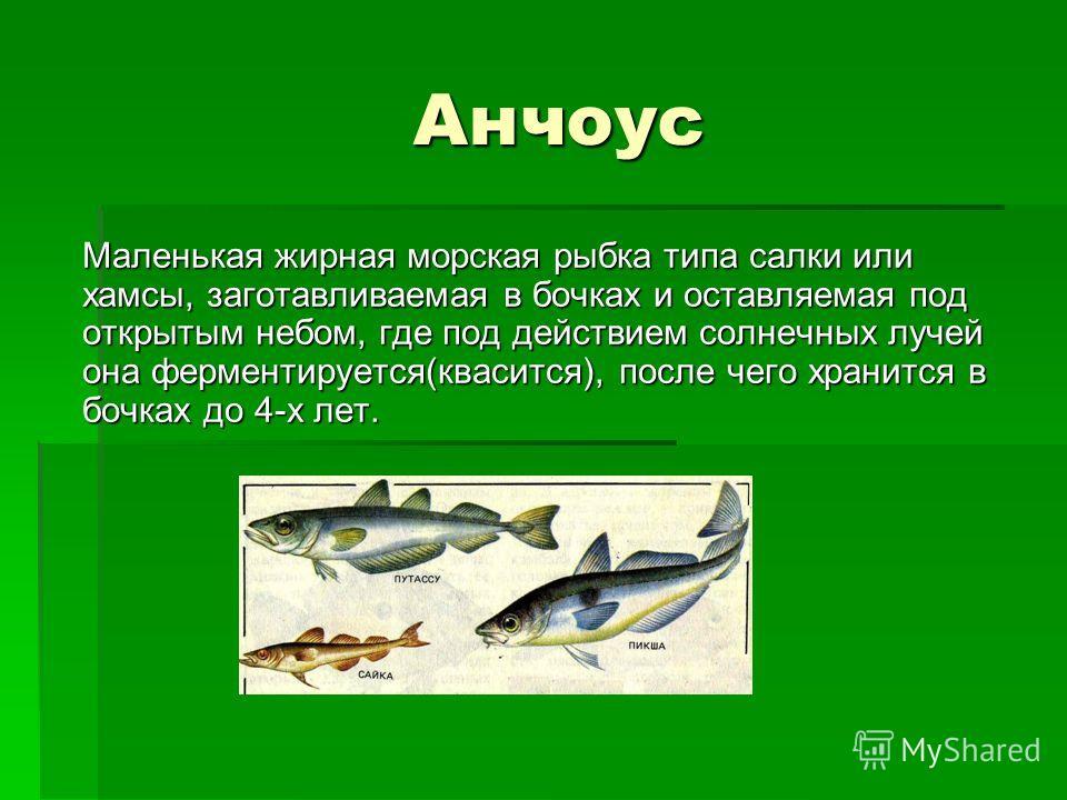 Анчоус Маленькая жирная морская рыбка типа салки или хамсы, заготавливаемая в бочках и оставляемая под открытым небом, где под действием солнечных лучей она ферментируется(квасится), после чего хранится в бочках до 4-х лет.