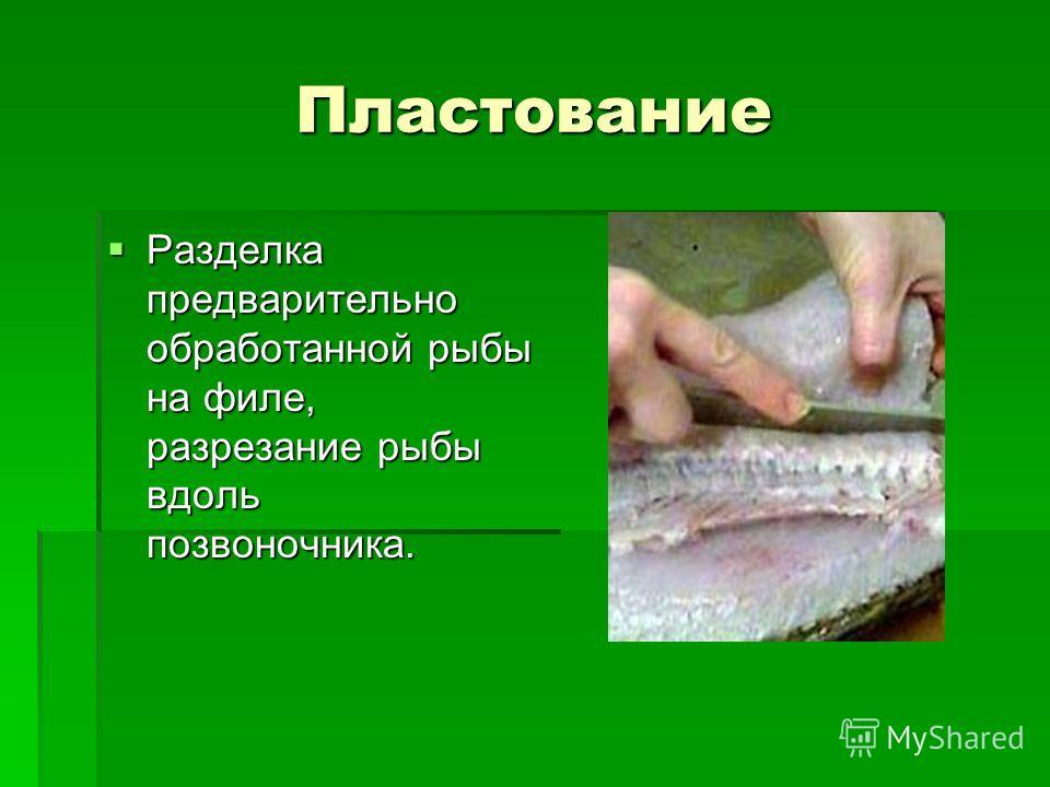 Пластование Разделка предварительно обработанной рыбы на филе, разрезание рыбы вдоль позвоночника. Разделка предварительно обработанной рыбы на филе, разрезание рыбы вдоль позвоночника.