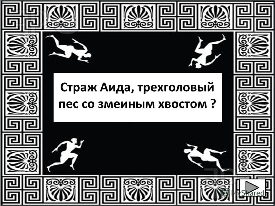 Страж Аида, трехголовый пес со змеиным хвостом ?