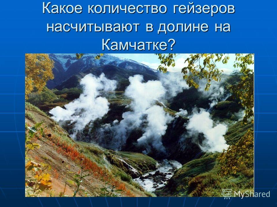 Какое количество гейзеров насчитывают в долине на Камчатке?