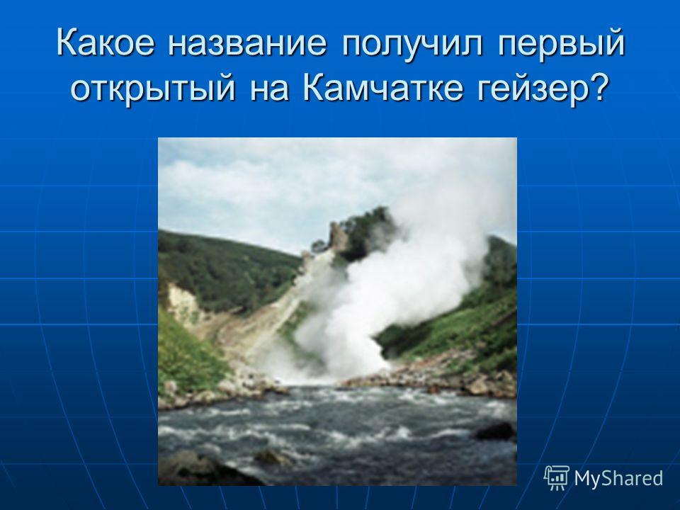 Какое название получил первый открытый на Камчатке гейзер?