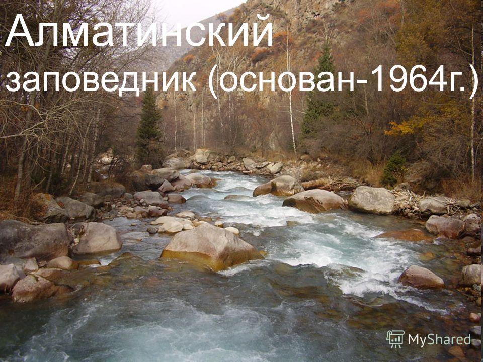 Алматинский заповедник (основан-1964 г.)