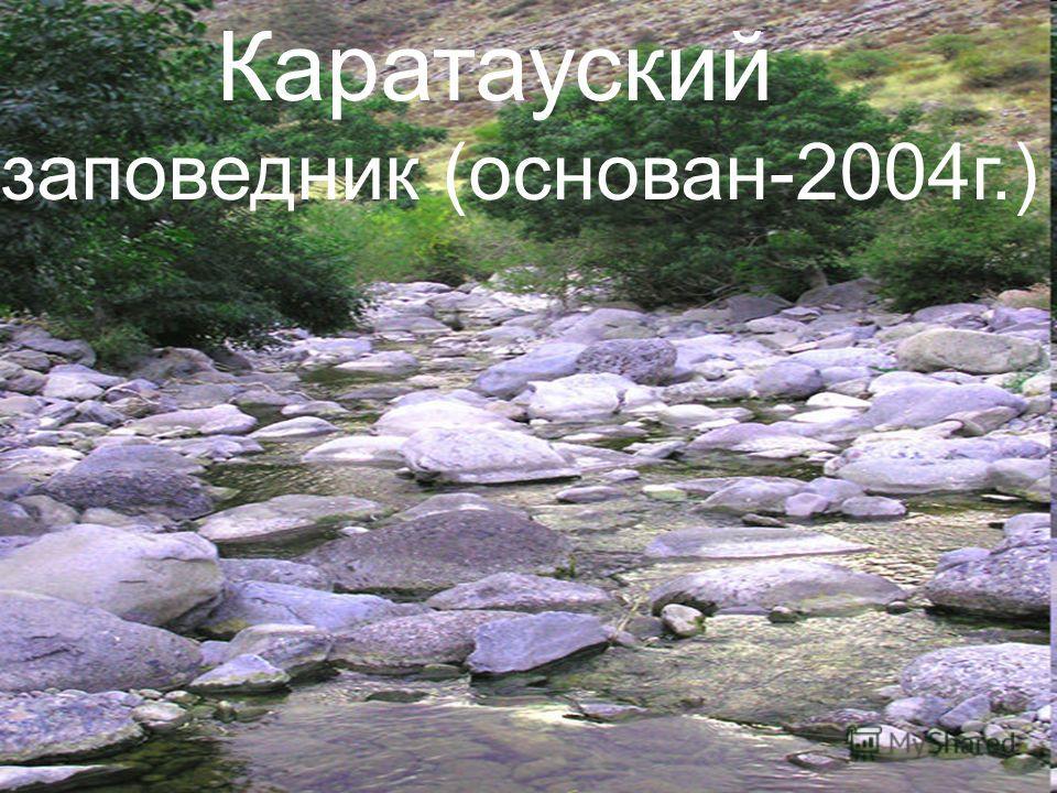 Каратауский заповедник (основан-2004 г.)
