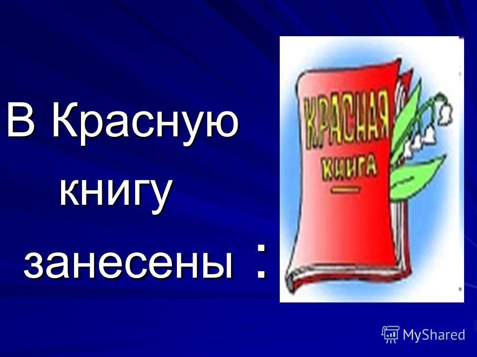 В Красную книгу занесены : книгу занесены :