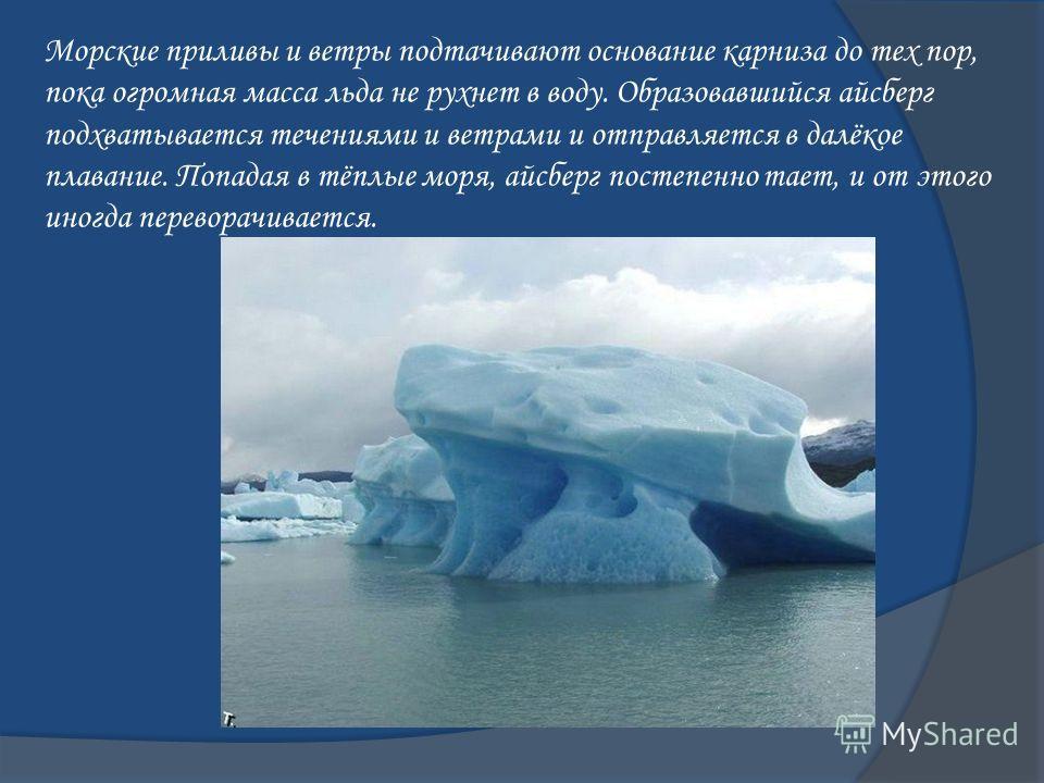 Морские приливы и ветры подтачивают основание карниза до тех пор, пока огромная масса льда не рухнет в воду. Образовавшийся айсберг подхватывается течениями и ветрами и отправляется в далёкое плавание. Попадая в тёплые моря, айсберг постепенно тает,
