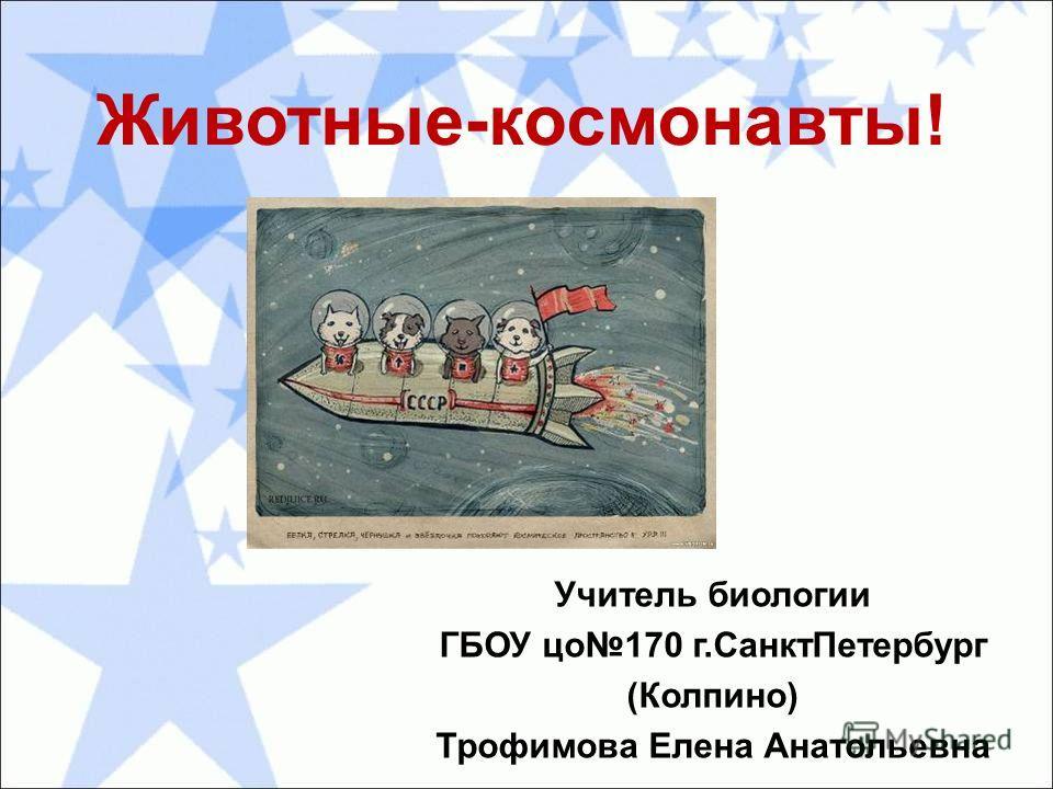 Животные-космонавты! Учитель биологии ГБОУ цо 170 г.Санкт Петербург (Колпино) Трофимова Елена Анатольевна