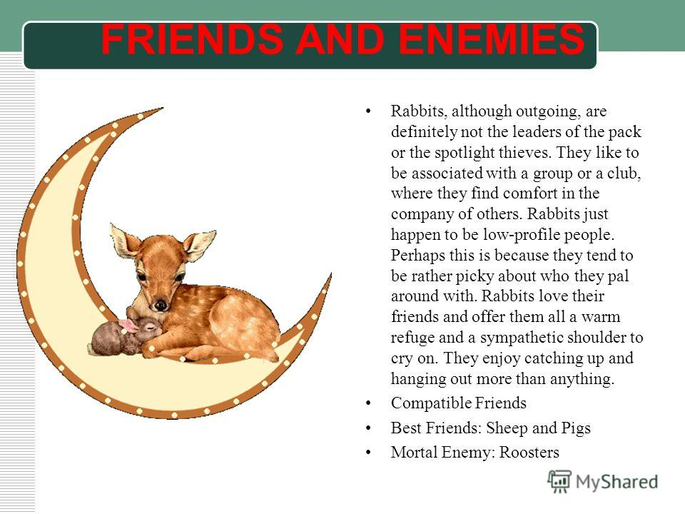 FRIENDS AND ENEMIES Rabbits, although outgoing, are definitely not the leaders of the pack or the spotlight thieves. They like to be associated with a group or a club, where they find comfort in the company of others. Rabbits just happen to be low-pr
