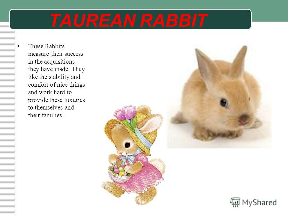 TAUREAN RABBIT These Rabbits measure their success in the acquisitions they have made. They like the stability and comfort of nice things and work hard to provide these luxuries to themselves and their families.